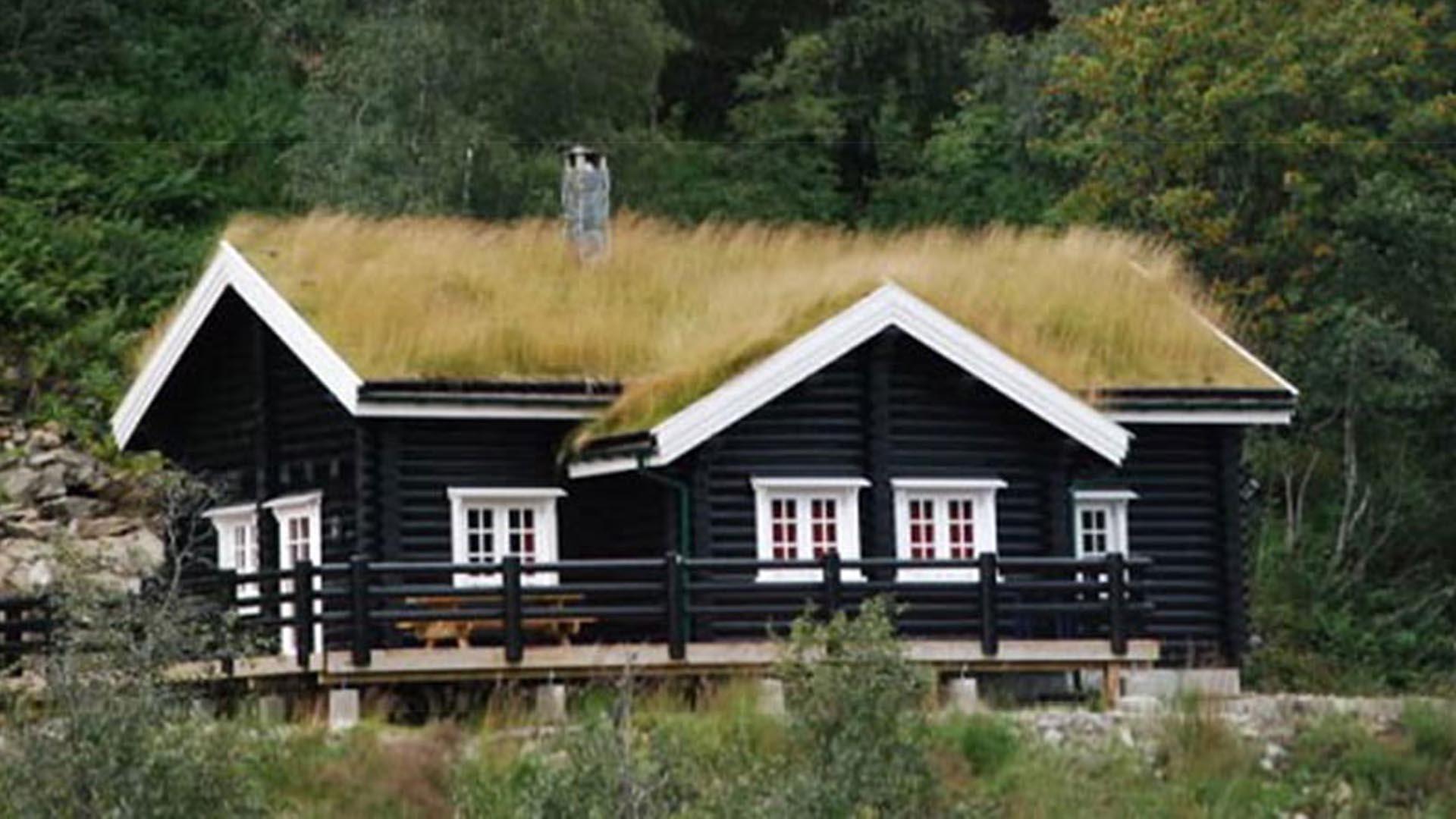 норвежский одноэтажный домик под травяной крышей