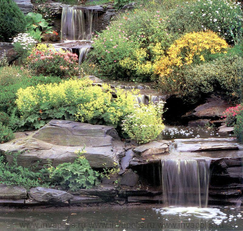 Ландшафтное проектирование и дизайна сада